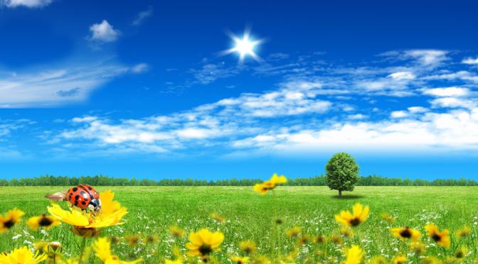 Kolartorps tomtägarförening välkomnar dig till årets sommarfest!